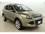 2013 Ginger Ale Metallic Ford Escape Titanium 2.0L EcoBoost 4WD #83499898