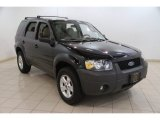 2006 Black Ford Escape XLT #83499894