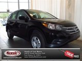 2013 Crystal Black Pearl Honda CR-V LX #83623533