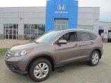 2013 Urban Titanium Metallic Honda CR-V EX-L AWD #83623987