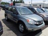 2010 Opal Sage Metallic Honda CR-V LX #83666447