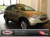 2008 Borrego Beige Metallic Honda CR-V EX-L #83666173