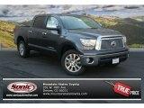 2013 Magnetic Gray Metallic Toyota Tundra Platinum CrewMax 4x4 #83666151