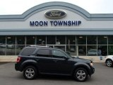 2009 Black Pearl Slate Metallic Ford Escape Limited V6 4WD #83692738
