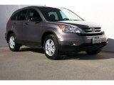 2010 Urban Titanium Metallic Honda CR-V EX #83724046