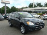 2010 Black Forest Pearl Toyota RAV4 I4 4WD #83724130