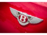 Bentley Continental GT V8 Badges and Logos