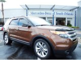 2011 Golden Bronze Metallic Ford Explorer XLT #83774324