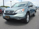 2010 Opal Sage Metallic Honda CR-V EX #83774461