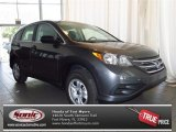2013 Polished Metal Metallic Honda CR-V LX #83835845