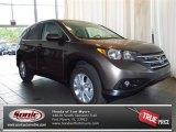 2013 Urban Titanium Metallic Honda CR-V EX #83883673