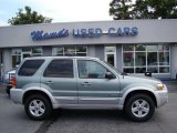 2006 Titanium Green Metallic Ford Escape Hybrid #83884006