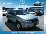 2006 Titanium Green Metallic Ford Escape Limited 4WD #83884199