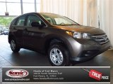 2013 Urban Titanium Metallic Honda CR-V LX #83934979