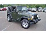 2006 Jeep Wrangler Jeep Green Metallic