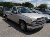 2005 Silver Birch Metallic Chevrolet Silverado 1500 Regular Cab #83990861