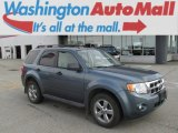 2010 Steel Blue Metallic Ford Escape XLT V6 4WD #84042572