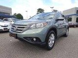 2012 Opal Sage Metallic Honda CR-V EX-L #84042415