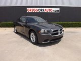 2013 Granite Crystal Dodge Charger SE #84093260