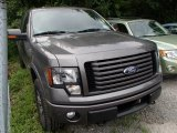 2011 Sterling Grey Metallic Ford F150 FX4 SuperCab 4x4 #84135466