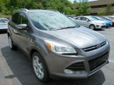 2014 Sterling Gray Ford Escape Titanium 2.0L EcoBoost 4WD #84135654