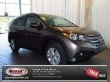 2013 Urban Titanium Metallic Honda CR-V EX-L #84135372