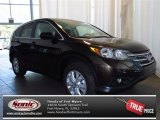 2013 Kona Coffee Metallic Honda CR-V EX #84135371