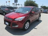 2014 Sunset Ford Escape SE 1.6L EcoBoost #84193851