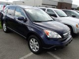 2008 Royal Blue Pearl Honda CR-V EX-L 4WD #84194032