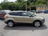 2013 Ginger Ale Metallic Ford Escape SE 1.6L EcoBoost #84216965