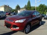 2014 Sunset Ford Escape Titanium 2.0L EcoBoost 4WD #84217346