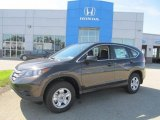 2013 Kona Coffee Metallic Honda CR-V LX AWD #84257131