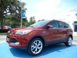 2014 Sunset Ford Escape Titanium 1.6L EcoBoost #84312342