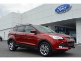 2014 Sunset Ford Escape SE 2.0L EcoBoost #84312439