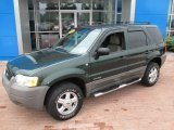 2002 Ford Escape Dark Highland Green Metallic