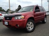 2006 Redfire Metallic Ford Escape Limited 4WD #84404035