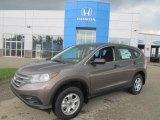 2013 Urban Titanium Metallic Honda CR-V LX AWD #84404383