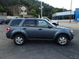 2010 Steel Blue Metallic Ford Escape XLT 4WD #84477927