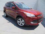 2014 Sunset Ford Escape SE 1.6L EcoBoost #84478041
