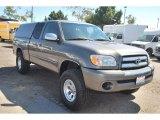 2005 Phantom Gray Pearl Toyota Tundra SR5 Access Cab #84518280