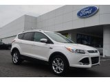 2014 White Platinum Ford Escape Titanium 1.6L EcoBoost #84565415