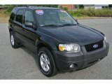 2006 Black Ford Escape XLT V6 4WD #84565716
