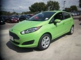 2014 Green Envy Ford Fiesta SE Hatchback #84713465