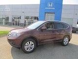 2014 Basque Red Pearl II Honda CR-V EX-L AWD #84767014