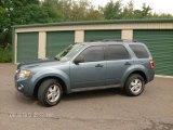 2010 Steel Blue Metallic Ford Escape XLT V6 4WD #84766724