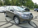 2013 Kona Coffee Metallic Honda CR-V LX AWD #84767058