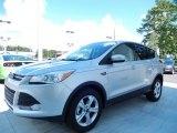 2014 Ingot Silver Ford Escape SE 1.6L EcoBoost #84809658