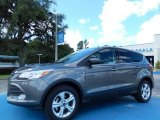 2014 Sterling Gray Ford Escape SE 1.6L EcoBoost #84809652