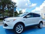 2014 Ingot Silver Ford Escape Titanium 2.0L EcoBoost #84809648
