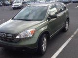 2009 Green Tea Metallic Honda CR-V EX 4WD #84859967